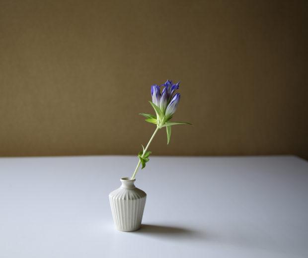 花を、一輪